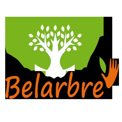Belarbre-Service | Jardinier-Paysagiste