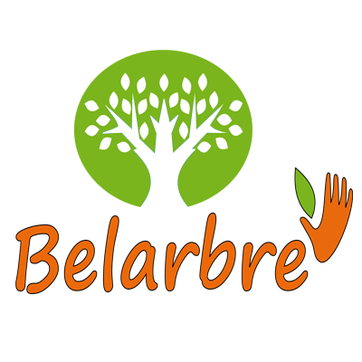 Belarbre-service-chatou1-shadow