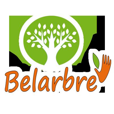 Belarbre-service-chatou1-shadow